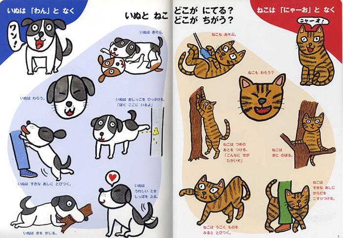 popy_dog_cat